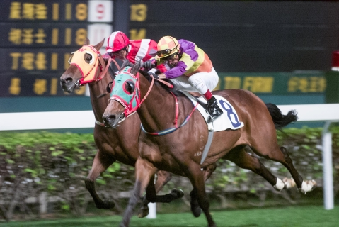 Bobo Duck (No. 8) romps to victory on Nov. 6, 2001. Bill Benter made 51,381 bets—one of which won $16 million. (Photographer: GARRIGE HO/SCMP)