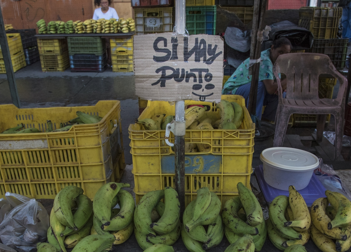 Venezuela's Inflation to Reach 1 Million Percent, IMF Forecasts