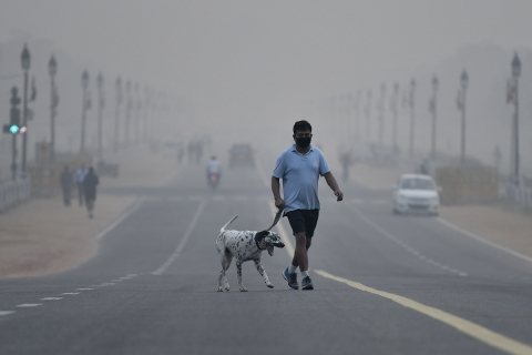 A man wearing a face mask crosses a road shrouded in smog with a dalmatian dog in New Delhi. (Photographer: Anindito Mukherjee/Bloomberg)