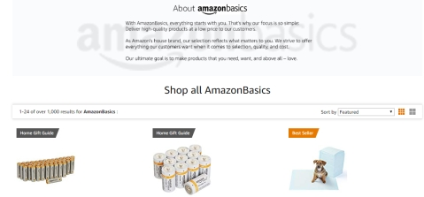 An image of the Amazon website with information on Amazon Basics.