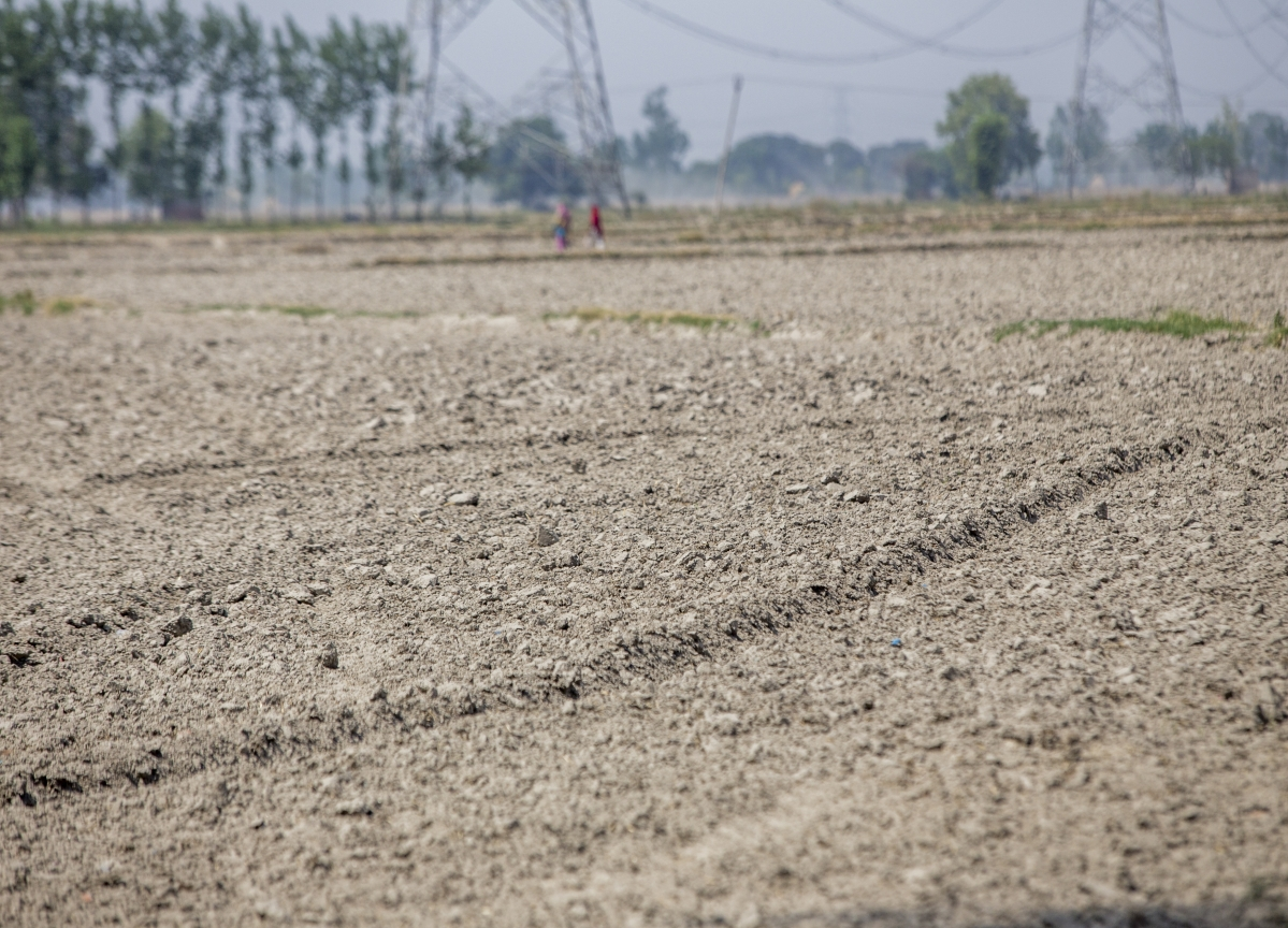 Nearly 50% Of India Currently Facing Drought: IIT Gandhinagar Scientists