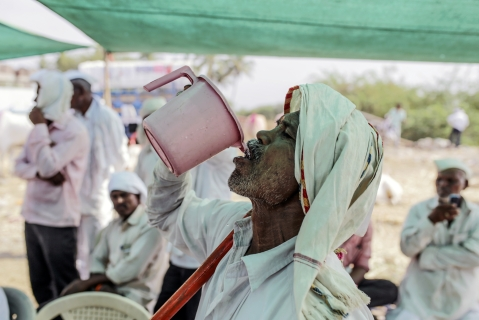 A man drinks water at a cattle market in Beed, Maharashtra, India. (Photographer: Dhiraj Singh/Bloomberg)