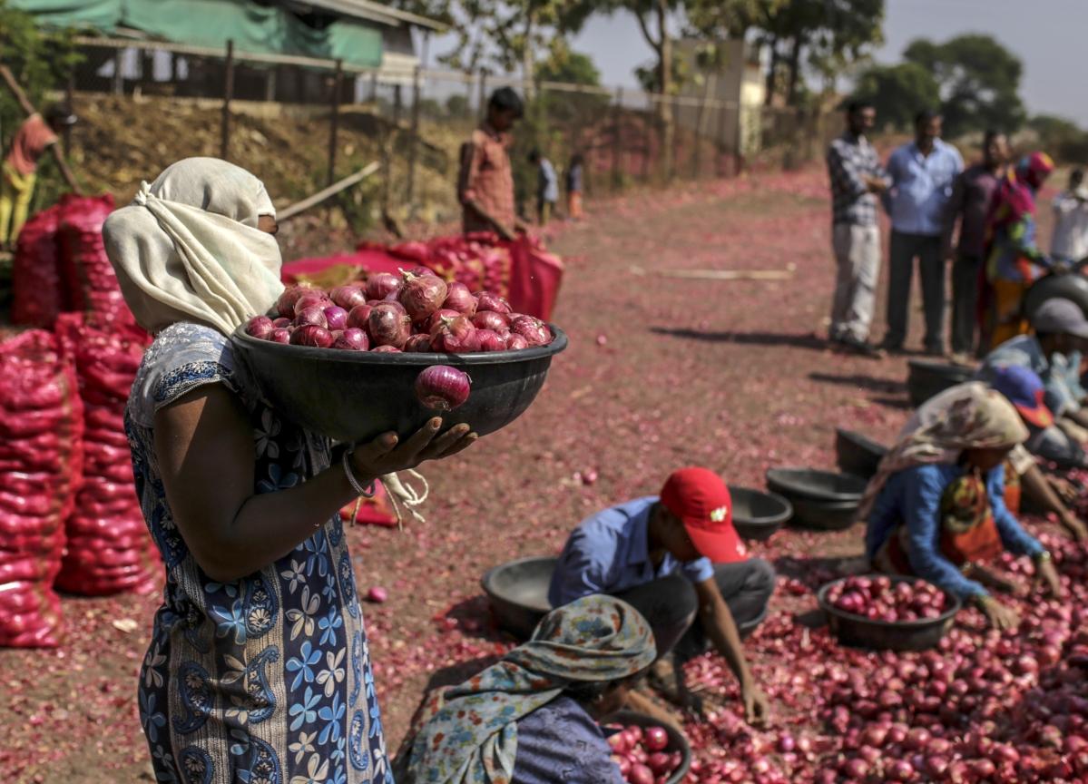 Income Tax Department Surveys Onion Traders In Maharashtra, Delhi, Madhya Pradesh