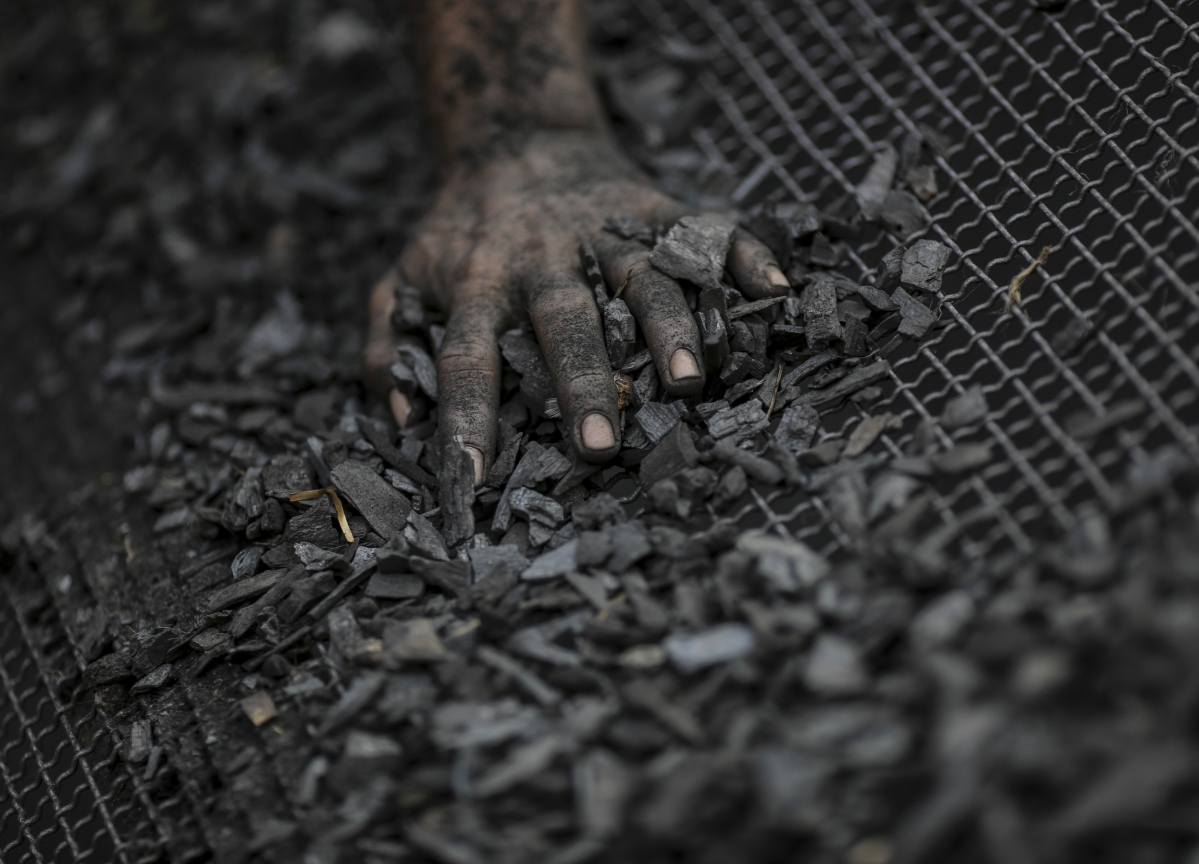 Q2 Results: Why Brokerages Hiked Coal India Stock's Target Price