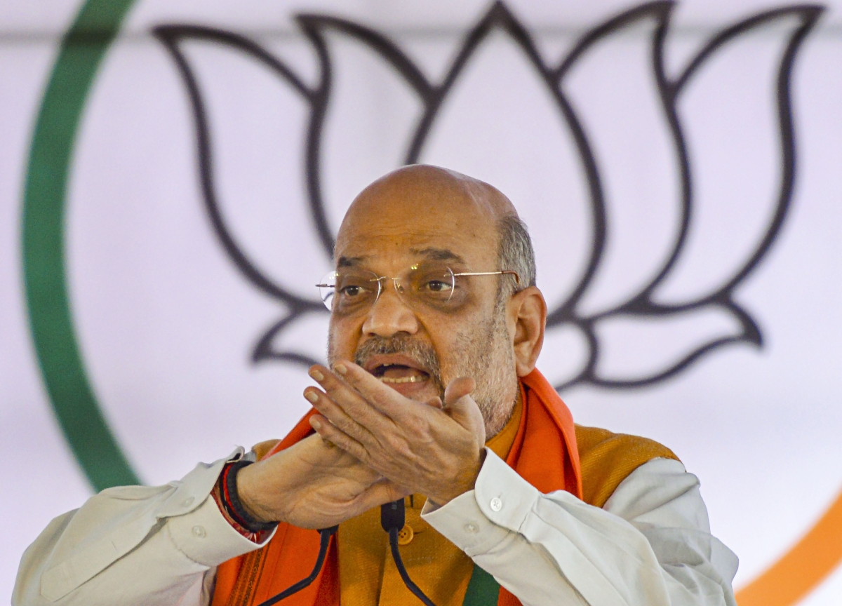 New BJP President By December, Says Amit Shah