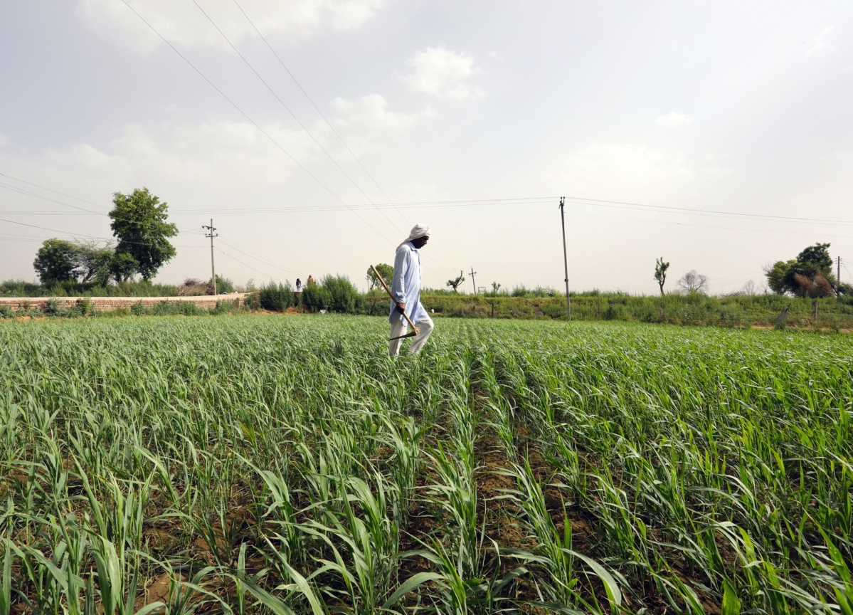 ITC's Sanjiv Puri To Lead 15th Finance Commission's Panel On Agri Reforms