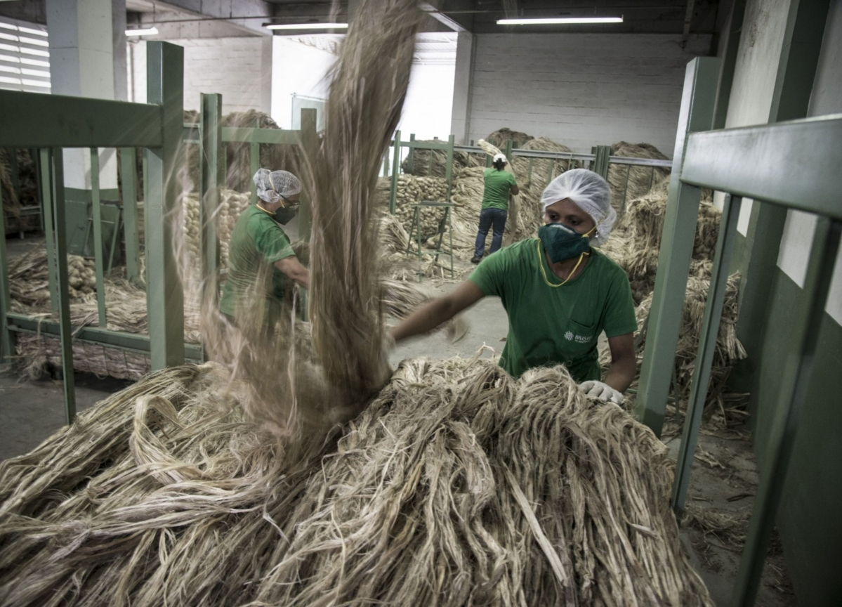 West Bengal's Jute Industry Hit By Fund Crunch As Banks Set Stringent Credit Norms
