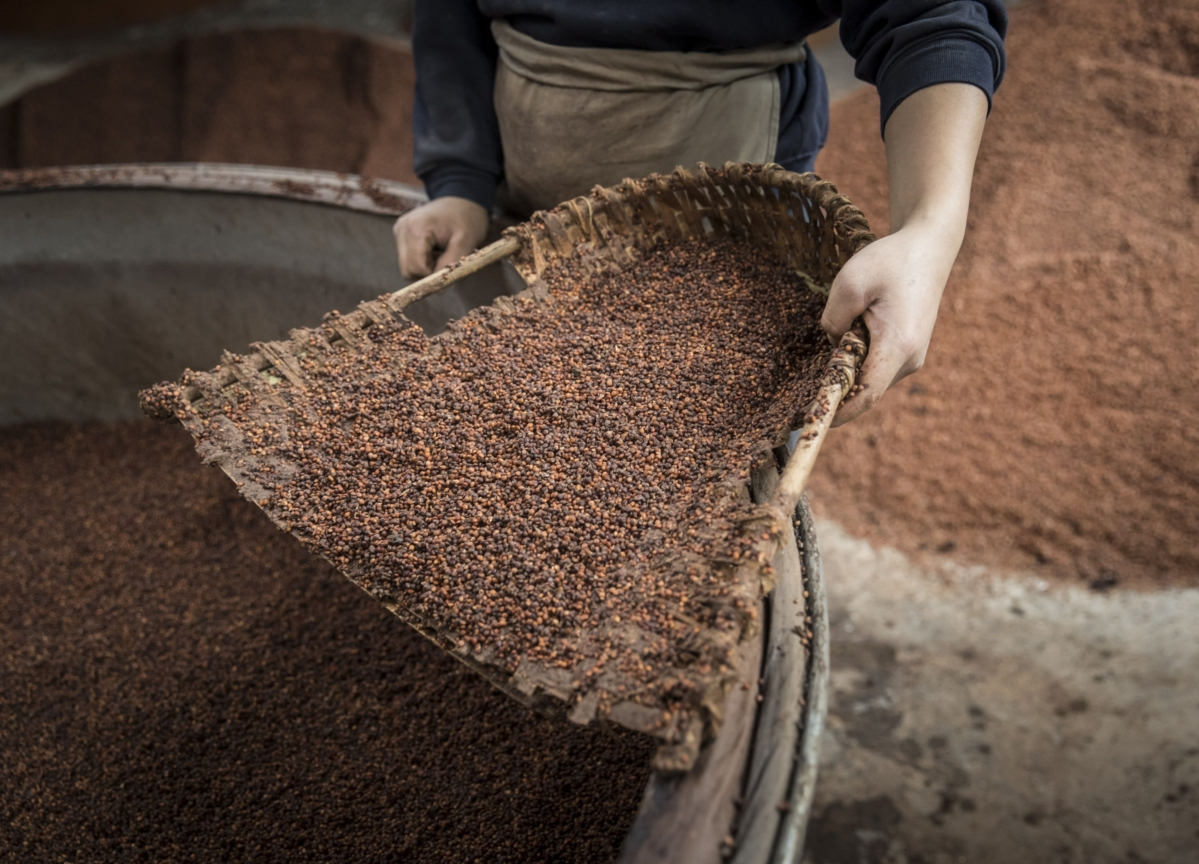 China Is Lured Back to U.S. Farm Buying Thanks to Cheap Sorghum