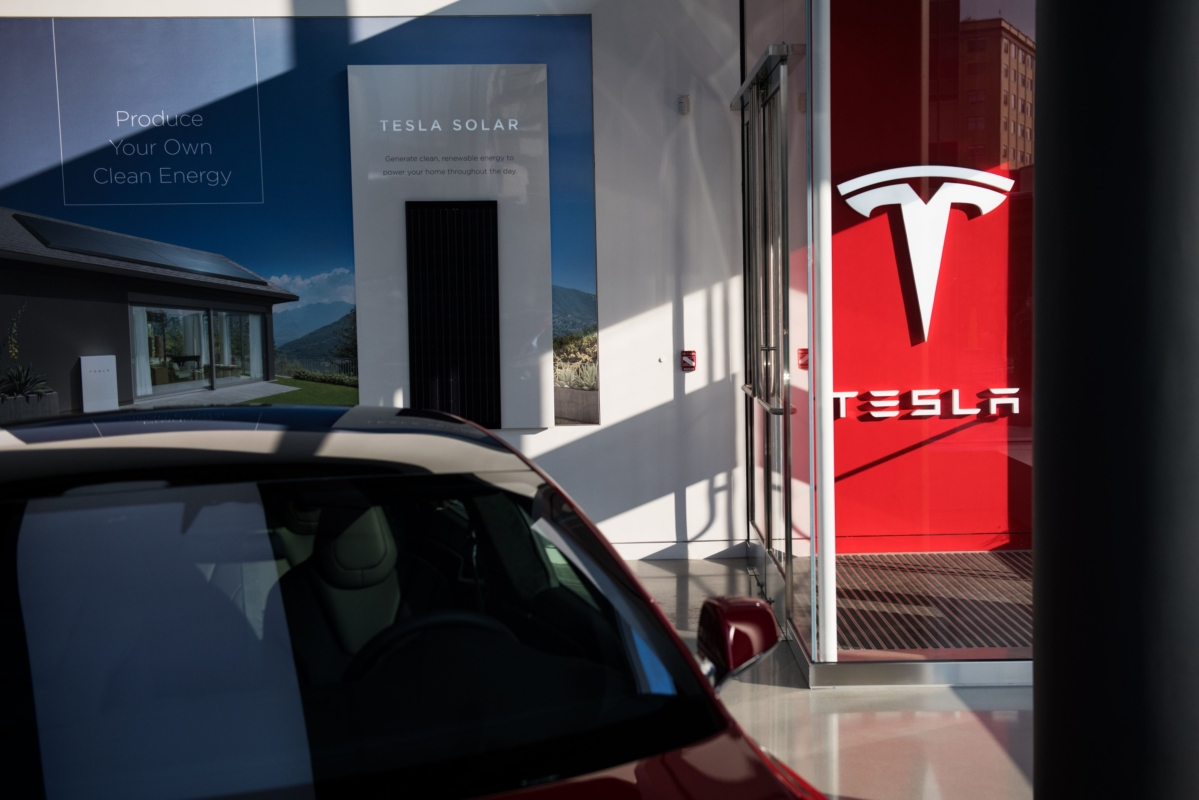 Tesla Gets Go-Ahead to Resume Clearing Forest in Germany