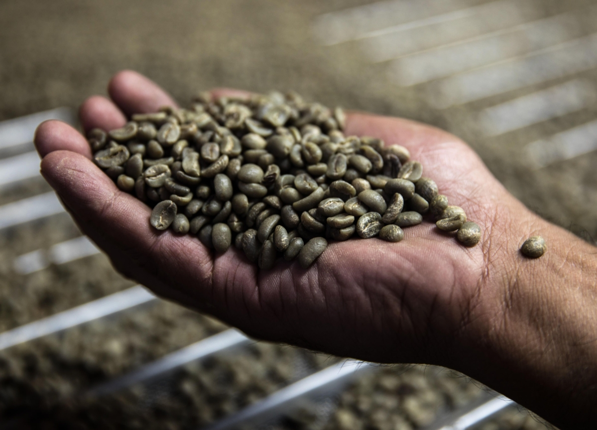 Even Coffee Supplies Under Threat Amid Global Transport Woes