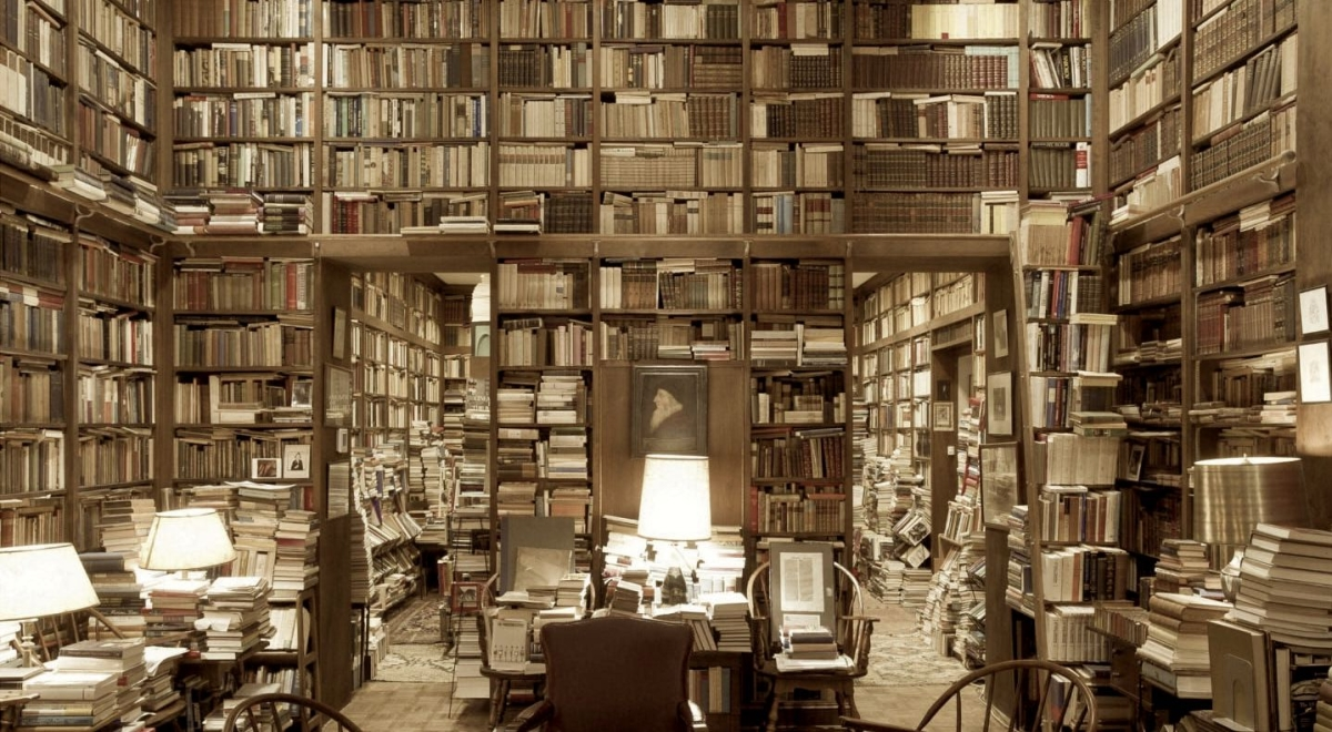 The Dharma Dispatch Reading List to Kickstart Your 2019