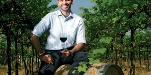 India's new vintages