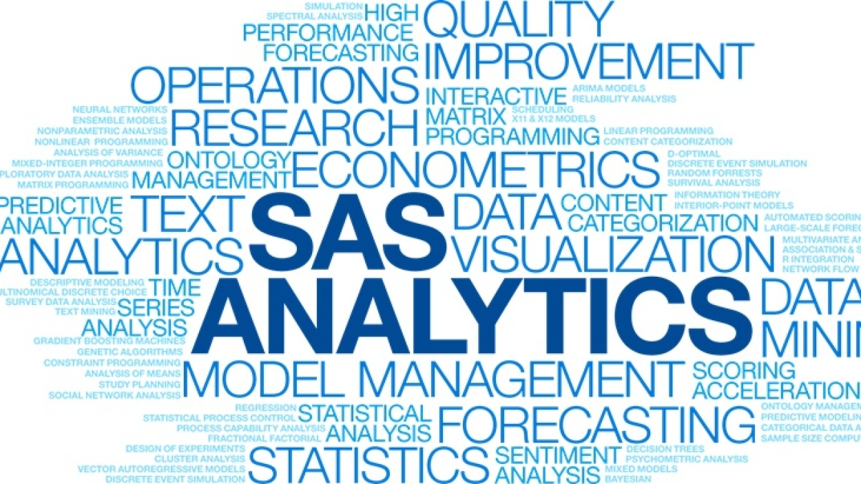 How SAS's analytics can help weed out graft