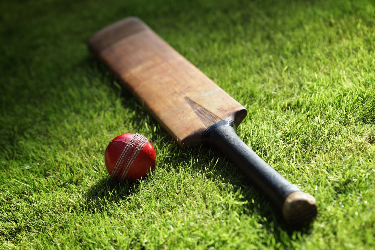 What ho! What can captains of industry learn from cricket?