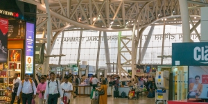 No domestic flights from March 25