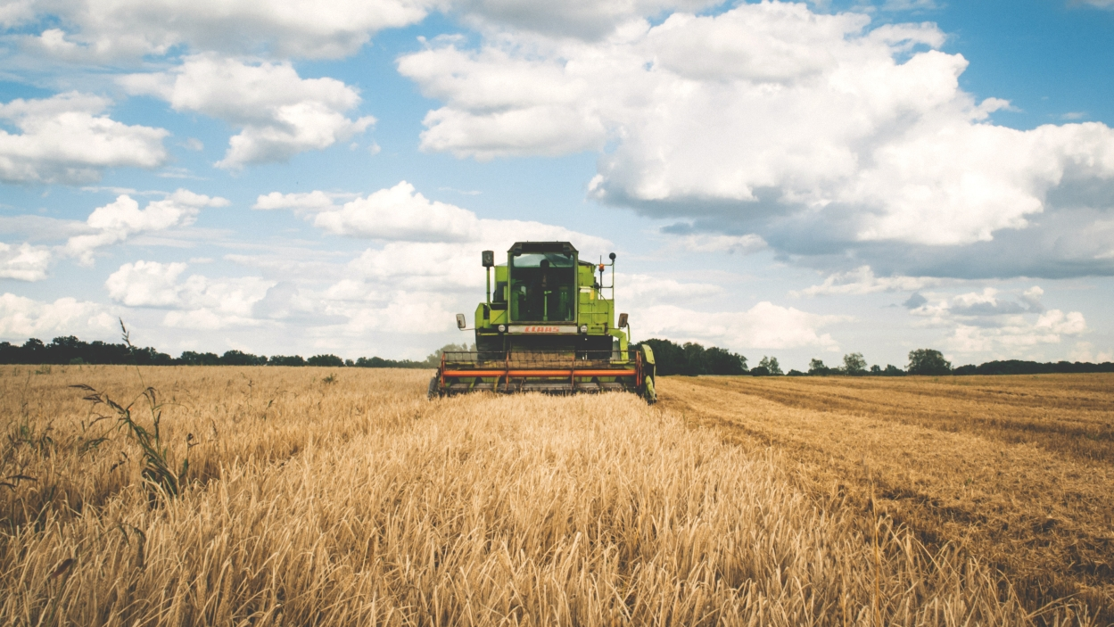 Trends in agriculture in 2019