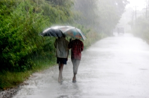 Why everybody loves a good monsoon