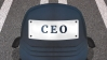 What a CEO needs to do for a sustainable future