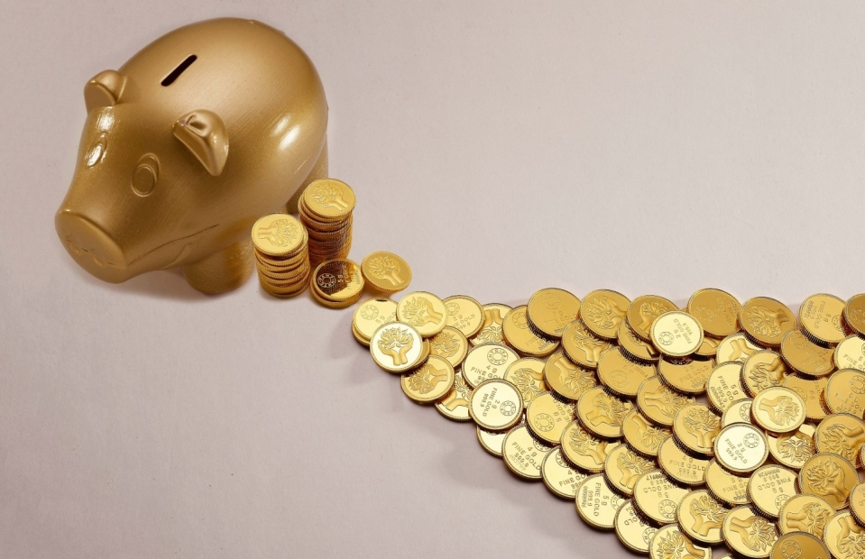 Why it is important for entrepreneurs to invest in a safe asset like digital gold