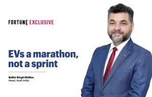 EVs a marathon, not a sprint: Audi India