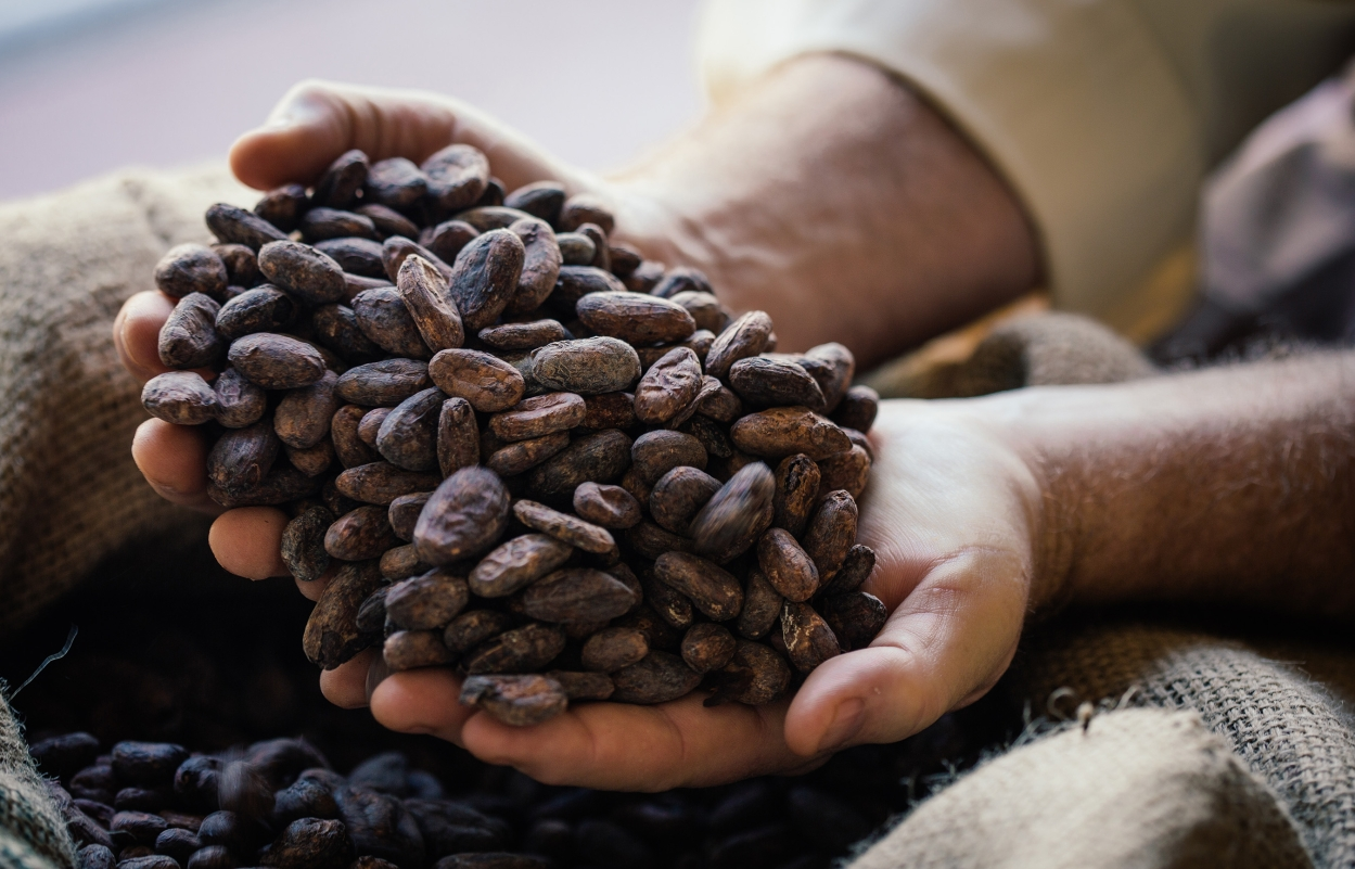 Mondelez Intl to source 100% of cocoa requirement by 2025