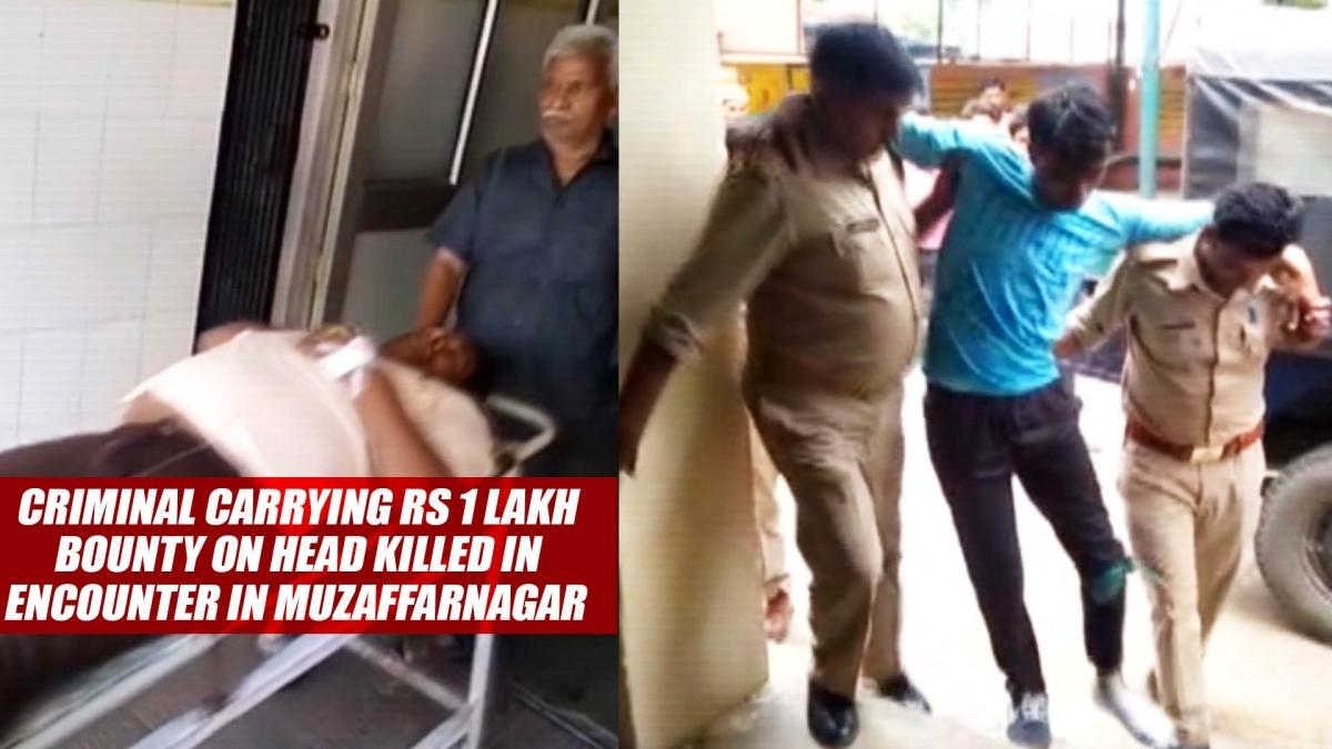 Criminal Carrying Rs 1 Lakh Bounty On Head Killed In Encounter In Muzaffarnagar