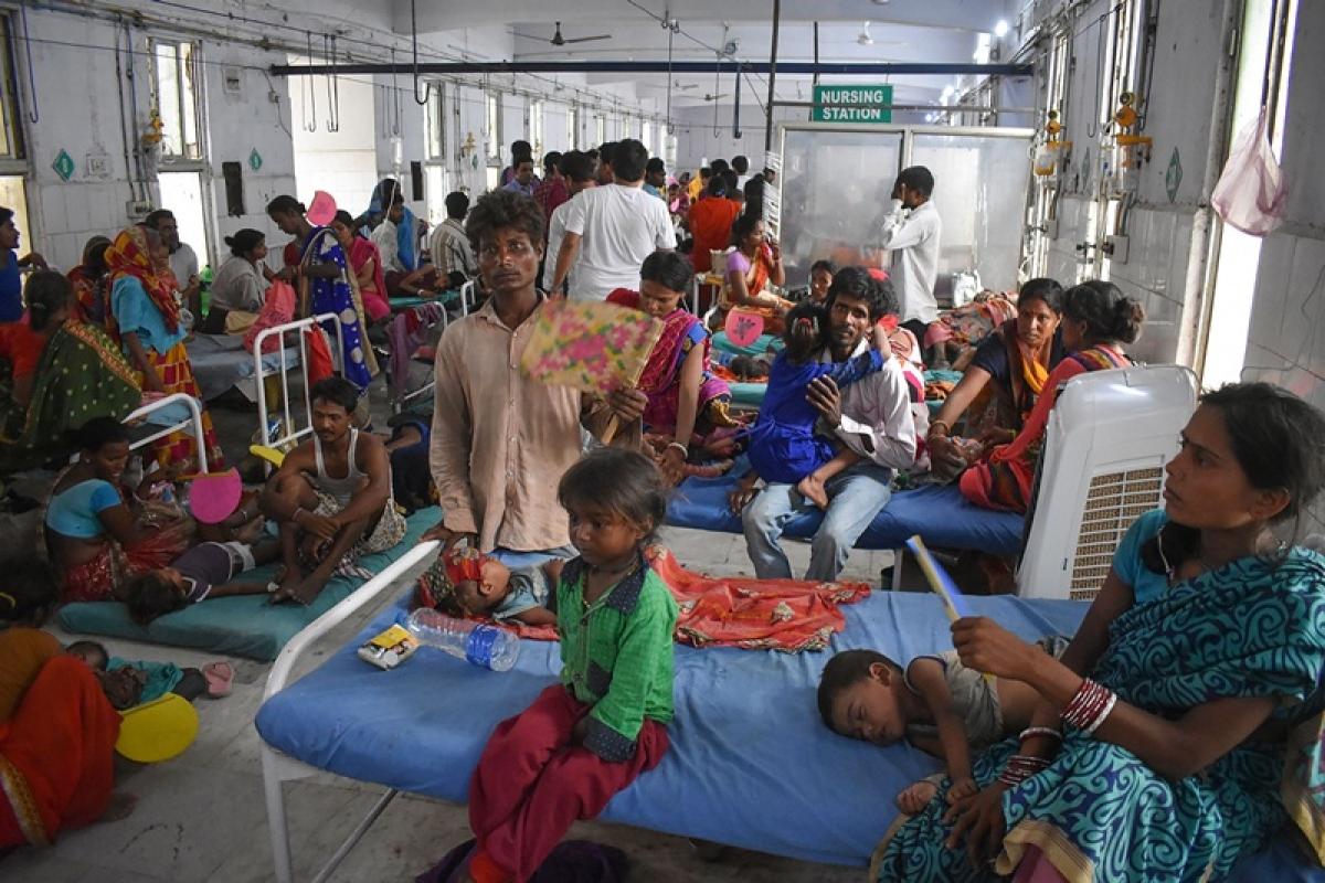 Bihar: People of Harivanshpur village vacate homes due to fear of Encephalitis