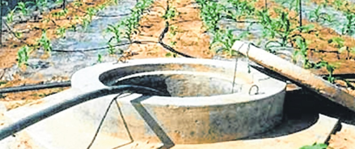 Rainwater harvesting is weapon to battle drought in state, says city engineer