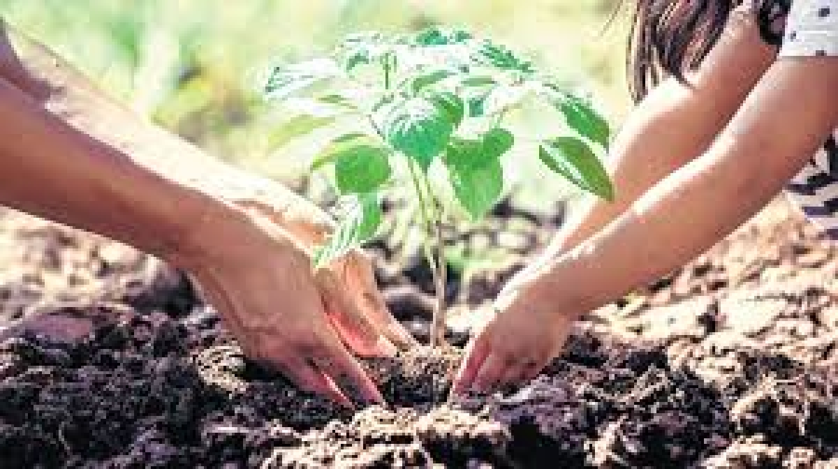 Series of programmmes held to mark 'World Environment Day'