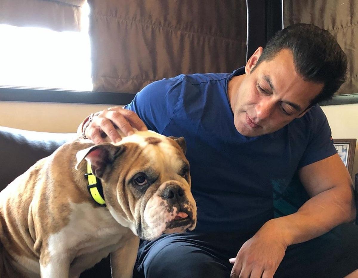 Salman Khan poses with his 'loving' dog