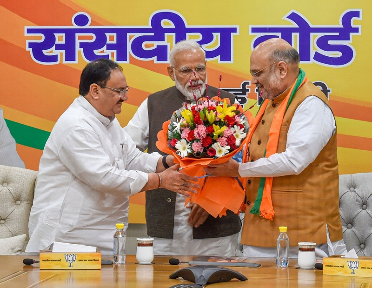 Will try to strengthen BJP as its worker: JP Nadda