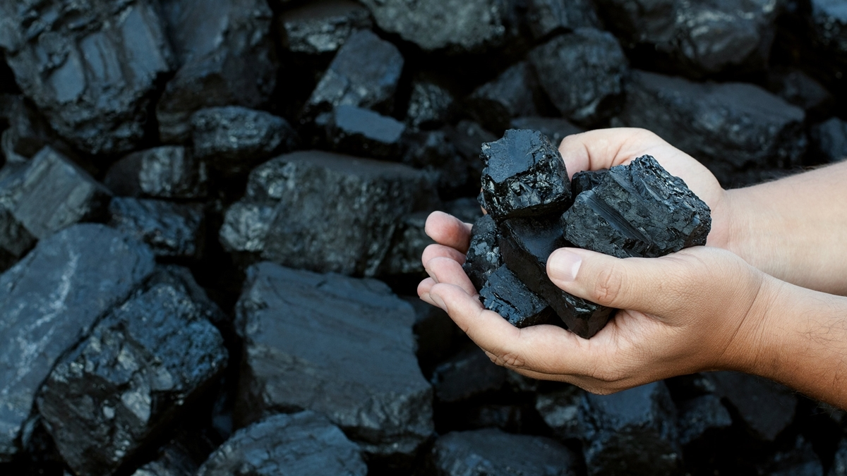 2nd tranche of commercial coal mines auction gets tremendous response: Government