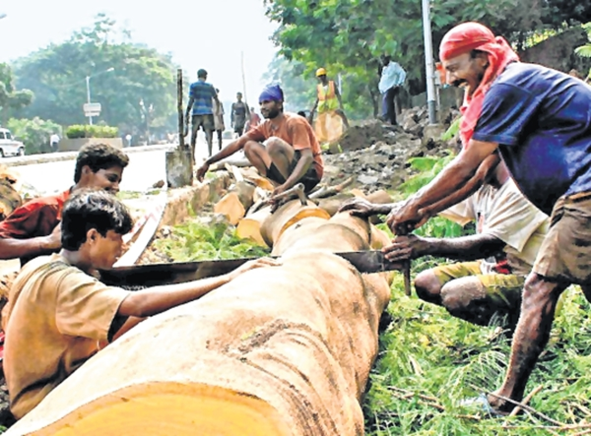 Bombay High Court won't tweak imbalance