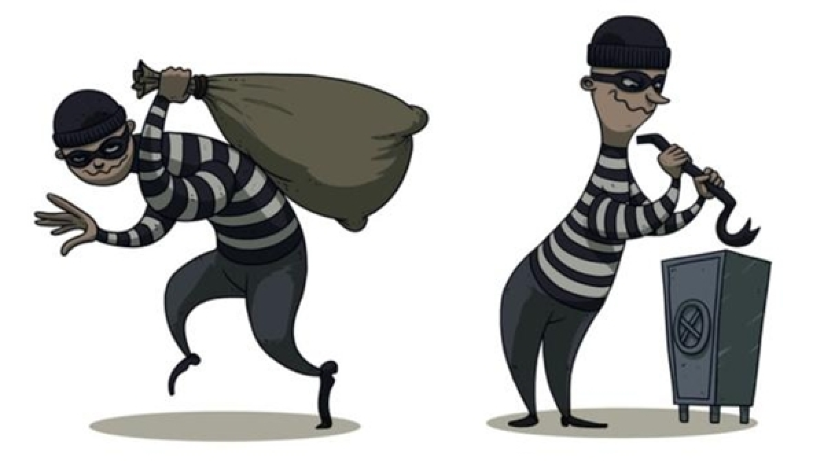 Pune: High-flying robber grounded in Wakad
