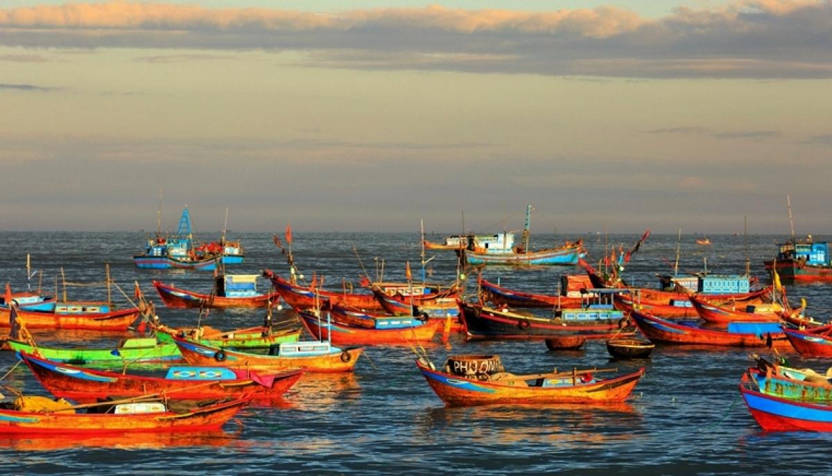 Narali Purnima 2019: Here's why Kolis offer coconuts to sea God on Nariyali Purnima