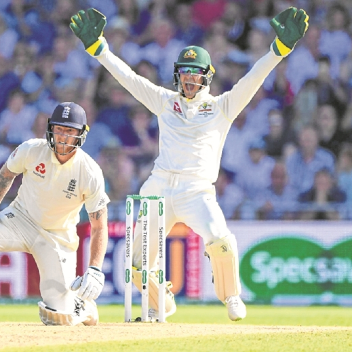 Tim Paine bears pain of frustrations