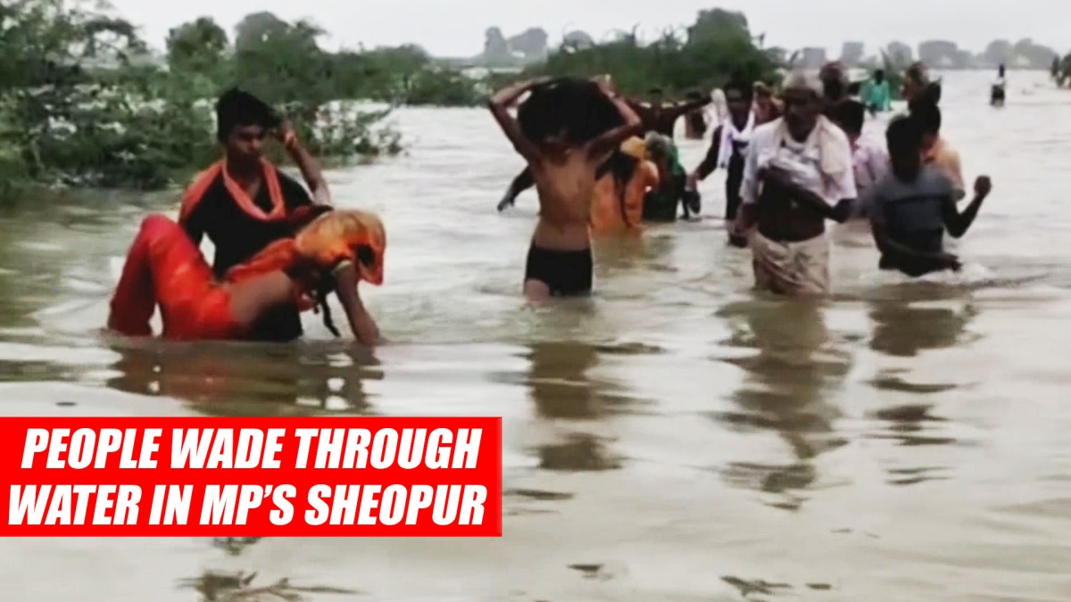 Rajasthan Monsoon: People Wade Through Water In MP's Sheopur