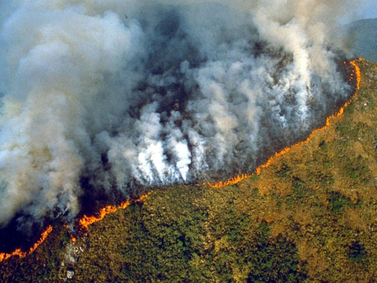 Fire erupts in Amazon rainforest in Brazil