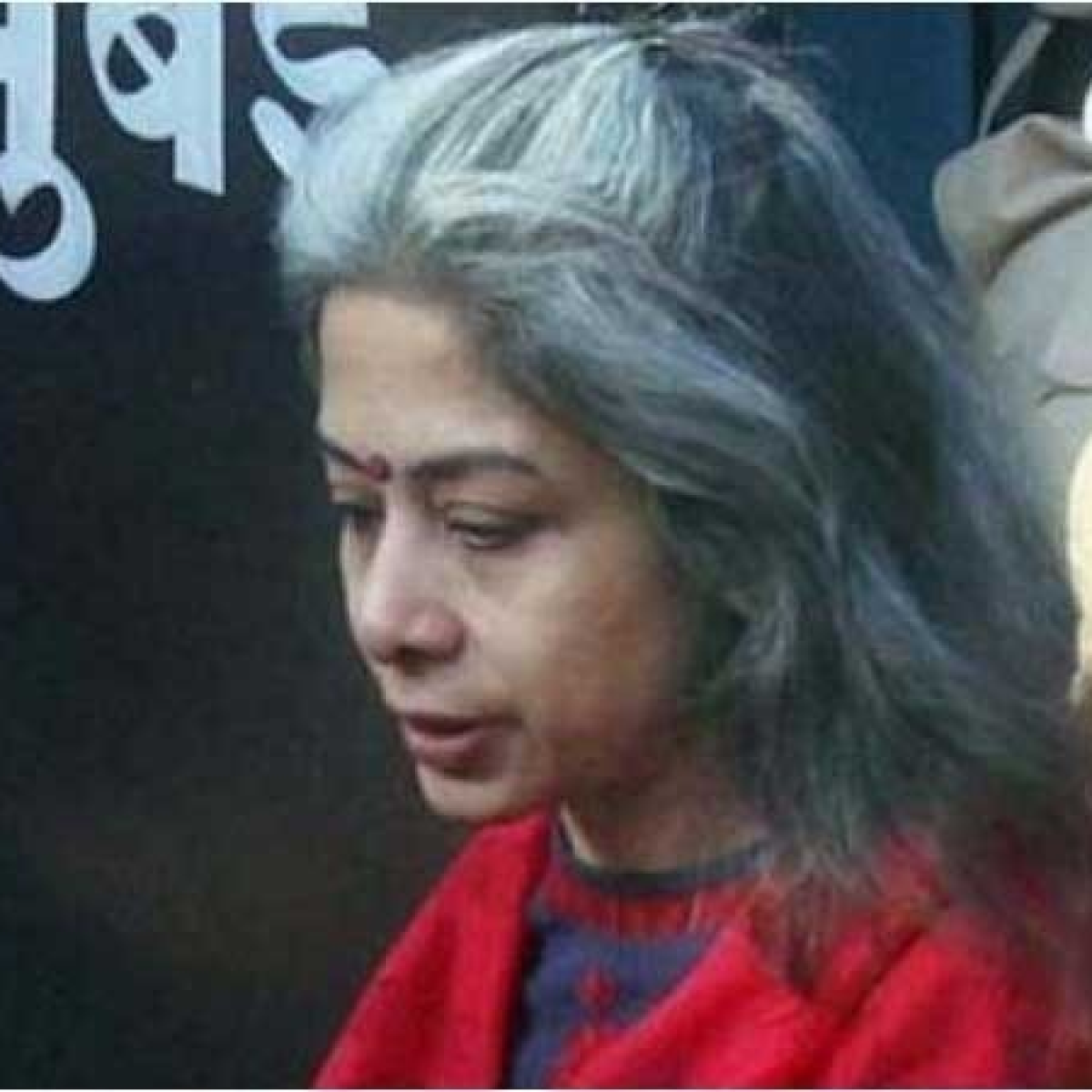 Sheena Bora murder case: Indrani Mukerjea moves CBI court for bail