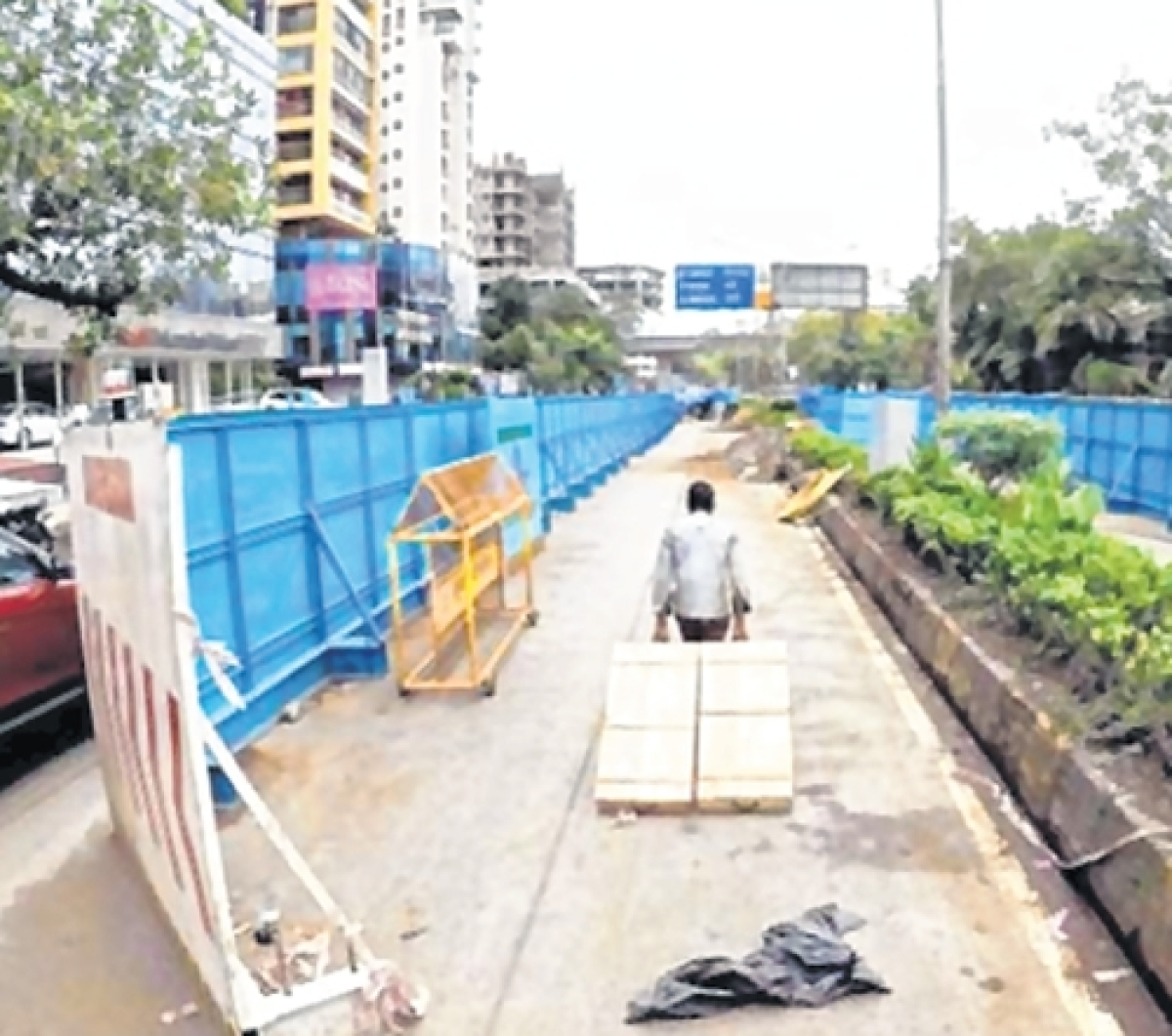 BMC panel refers back proposal for tree cutting