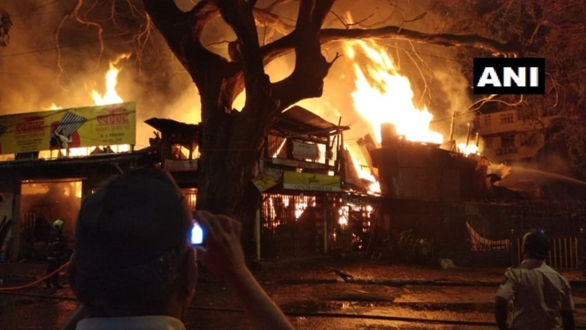Mumbai: Fire breaks out at timber yard in Byculla, no casualty