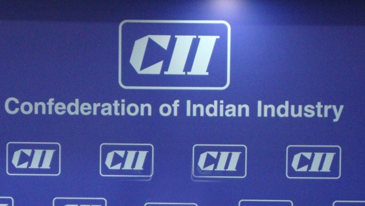 India needs multiple bad banks to address adverse impact of non-performing assets: CII