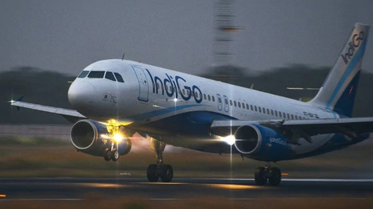 IndiGo Delhi-Istanbul flight takes off without passengers luggage