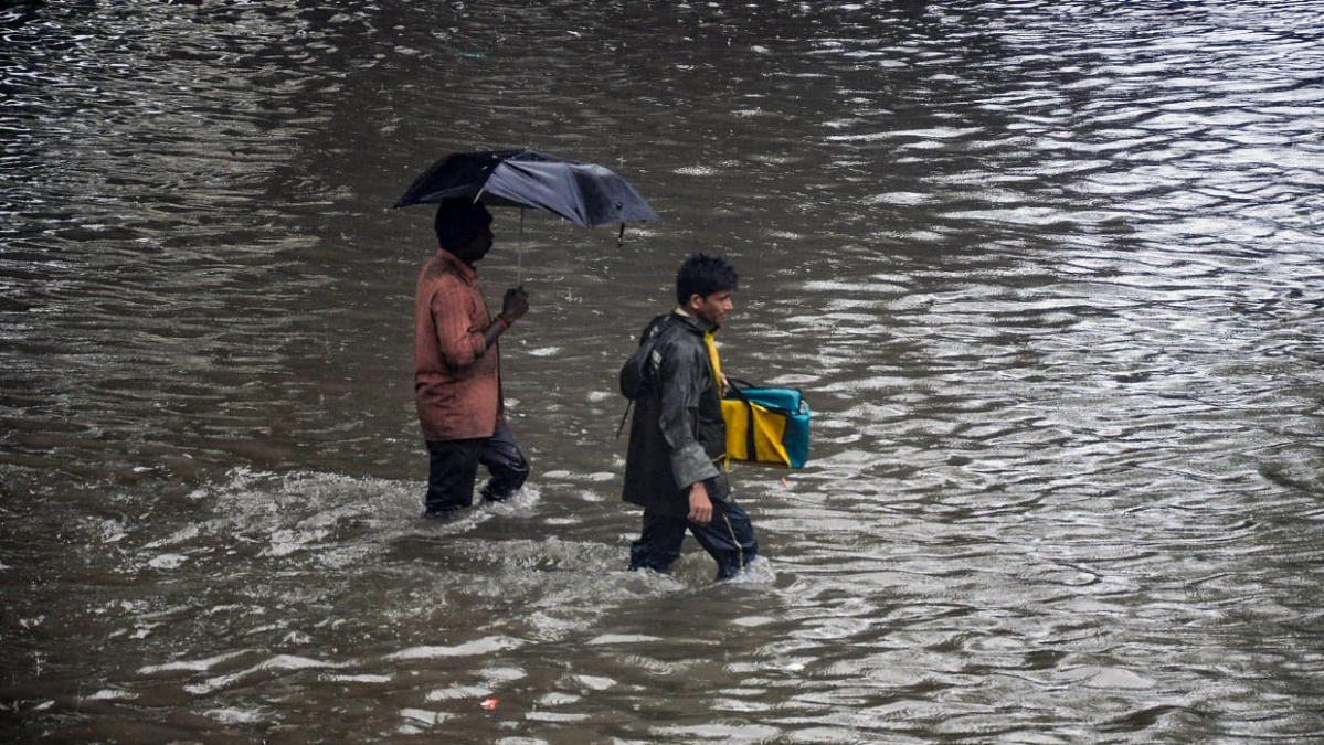 Southwest monsoon to be normal this year, predicts India Meteorological Department
