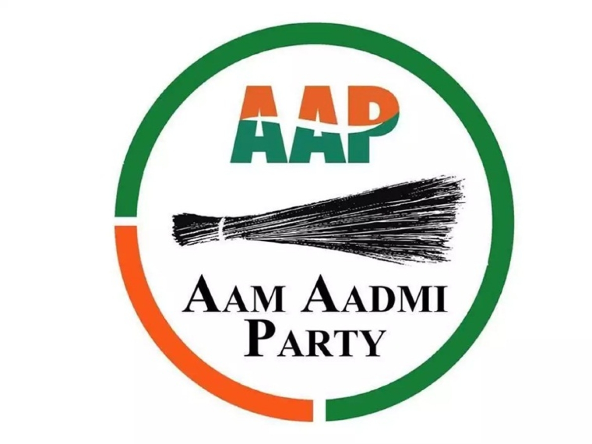 Maharashtra Assembly Elections: AAP candidate selection drive a big hit