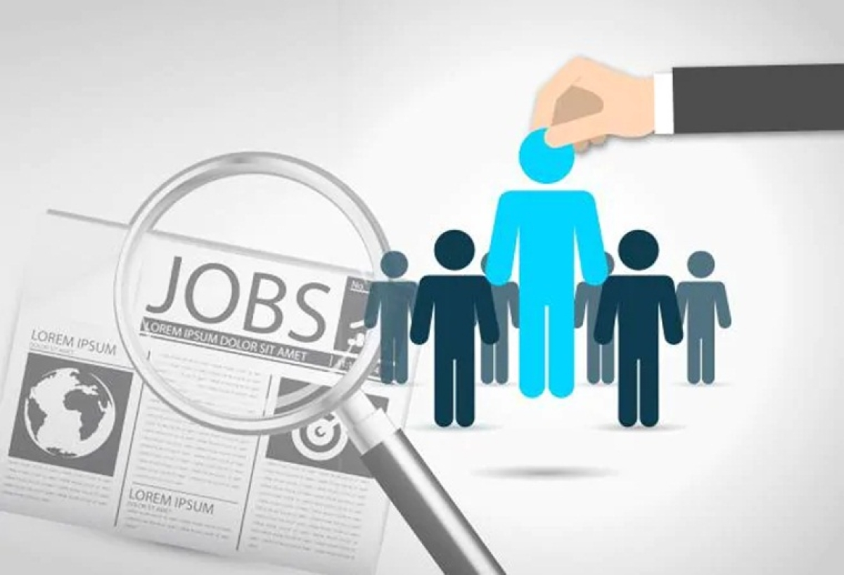 LIC releases notification for recruitment to fill 8500 vacancies for Assistant positions across India