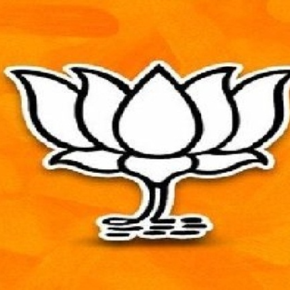 Indore: Only 22 BJP mandals out of 28 to be formed