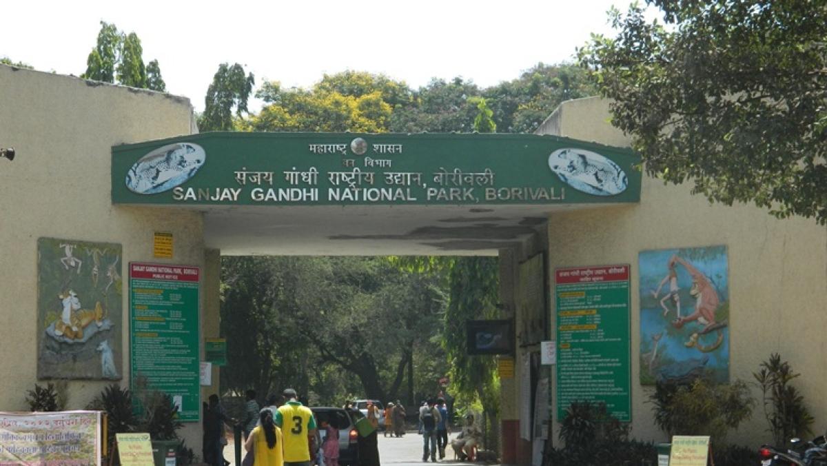 Development or 'arrested' development: Deforestation in SNGP, afforestation in Aurangabad
