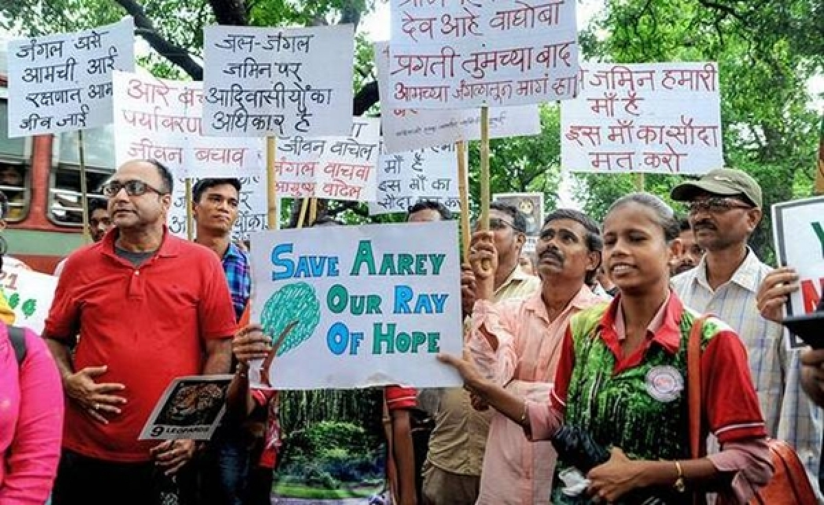 Hope flickers for Aarey, SC to hold a special sitting today on tree felling