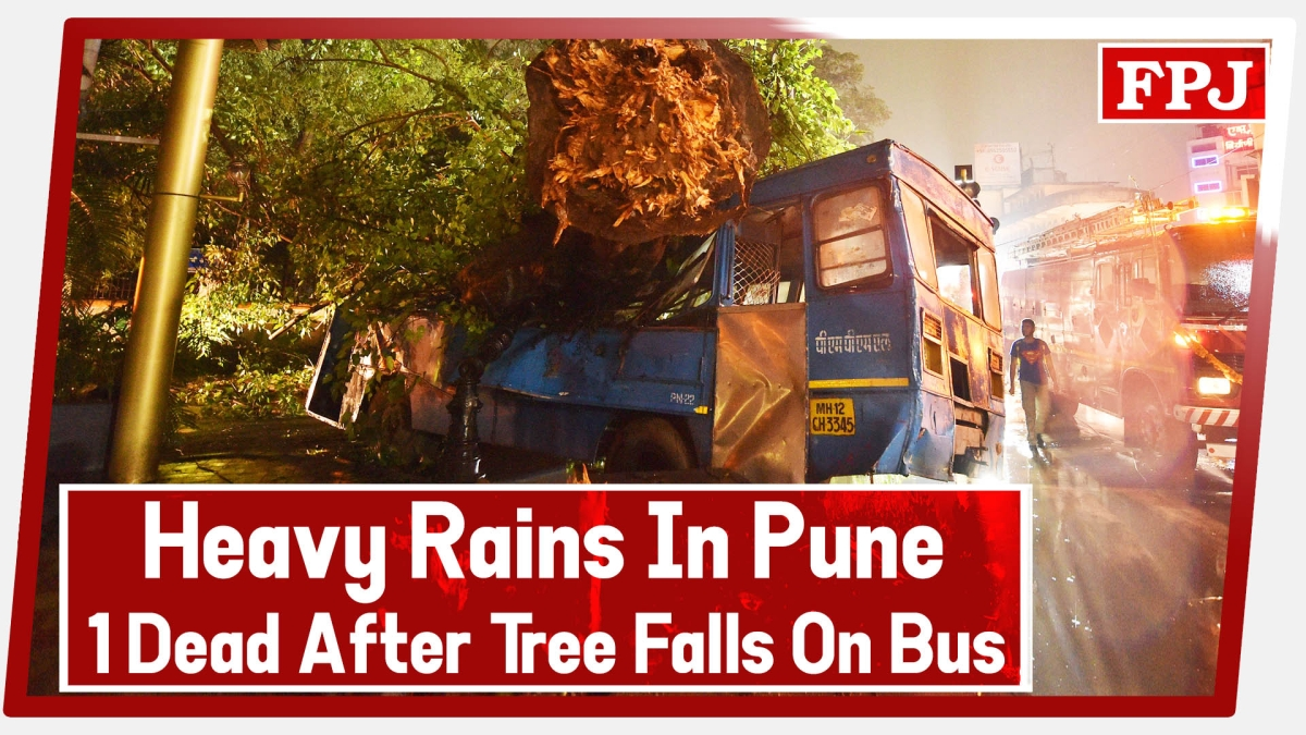 Heavy Rains In Pune- 1 Dead After Tree Falls On Bus